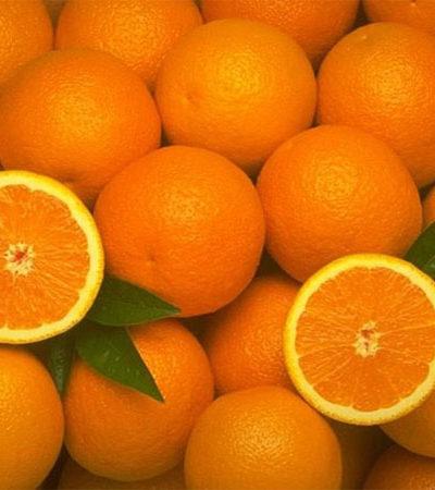 Orange mood — hot oranges